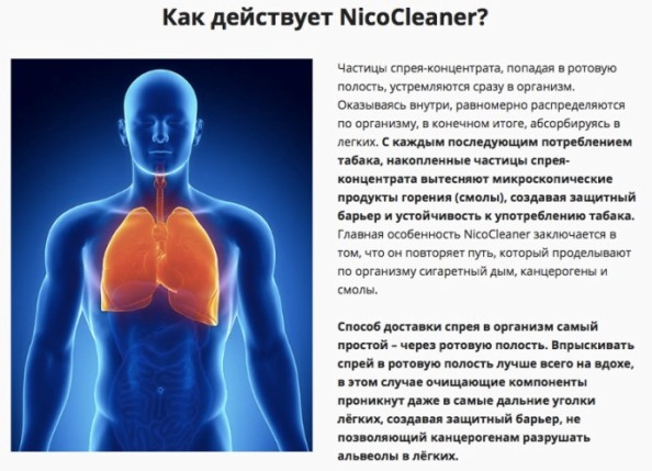Как заказать Nico cleaner купить